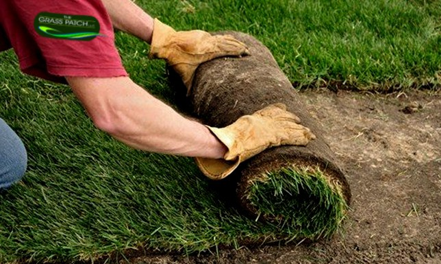 Sod Service in Billings