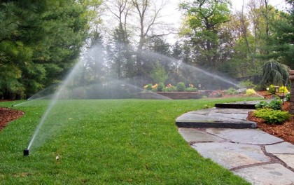 Best time to water your lawn